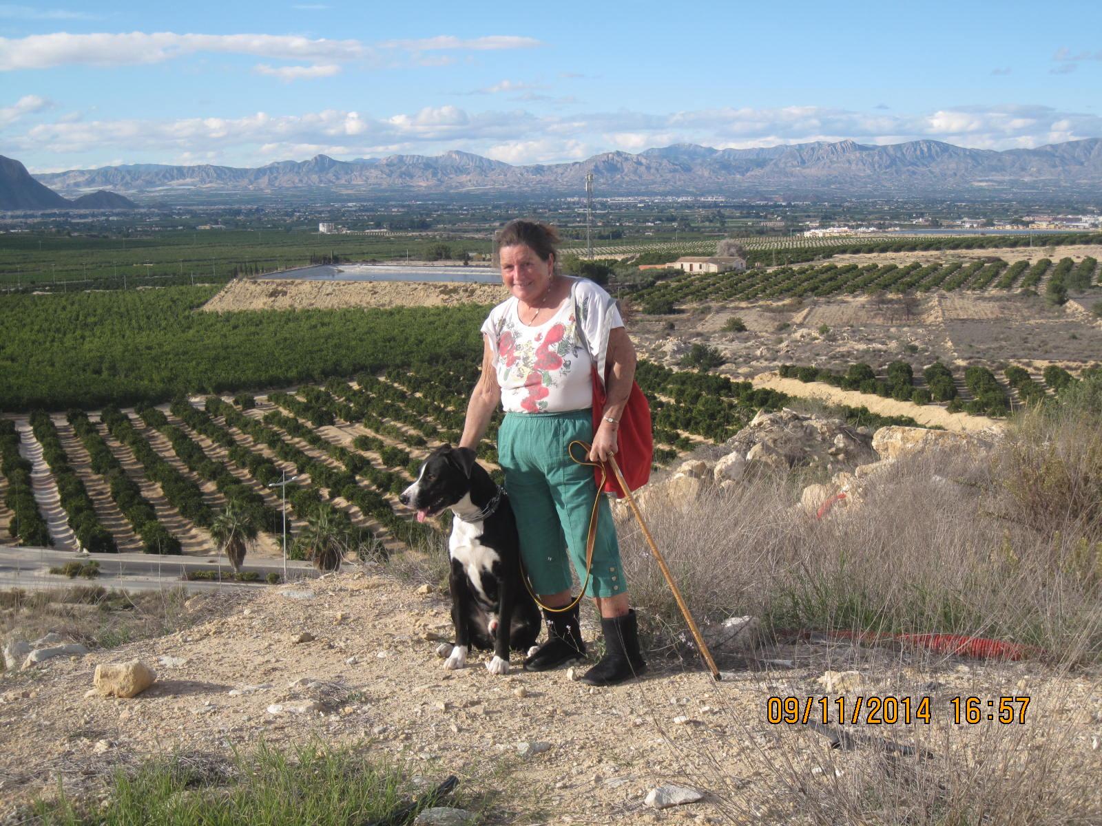 zoco, garden, golf course 054