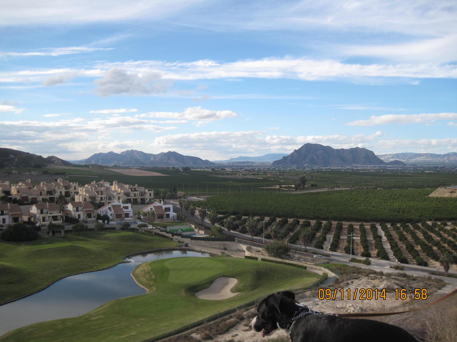 zoco, garden, golf course 058
